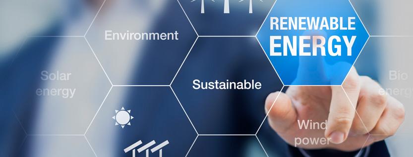 El-espiritu-empresarial-y-la-innovacion-para-la-sustentabilidad.